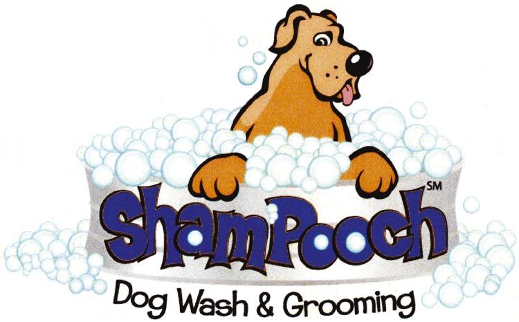 Up to 25 value shampooch self serve dog wash grooming vip perks shampooch self serve dog wash grooming solutioingenieria Gallery